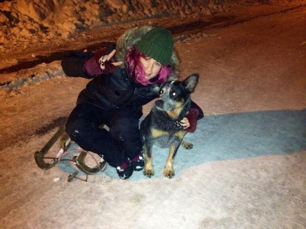 Tucker a pesar de ser un perro de raza autraliana, ama la nieve con toda su alma :3